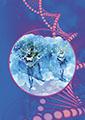 Formation en Psychogénéalogie bio médicale