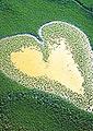 Viaggio integrativo al cuore dell'uomo